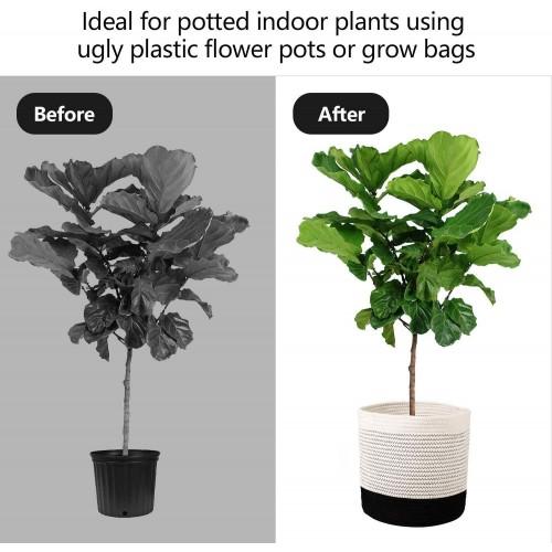 Modern Indoor Planter Basket