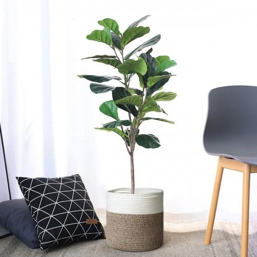 Indoor Natural Plant Basket