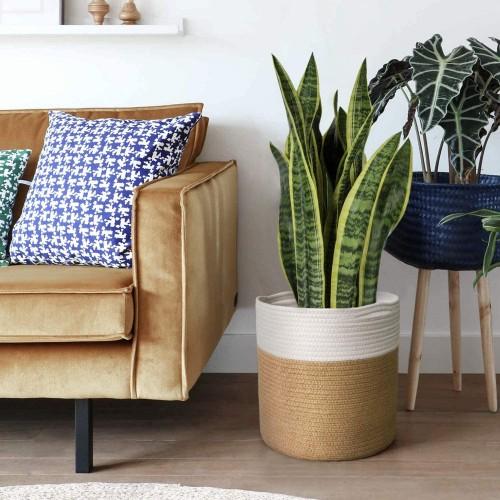 Natural Jute Plant Basket
