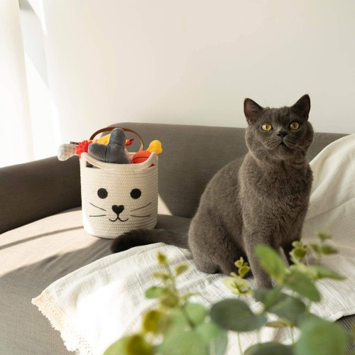 Cute Cat Hanging Baskets