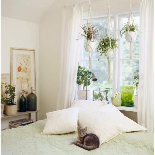 Indoor Plant Hangers