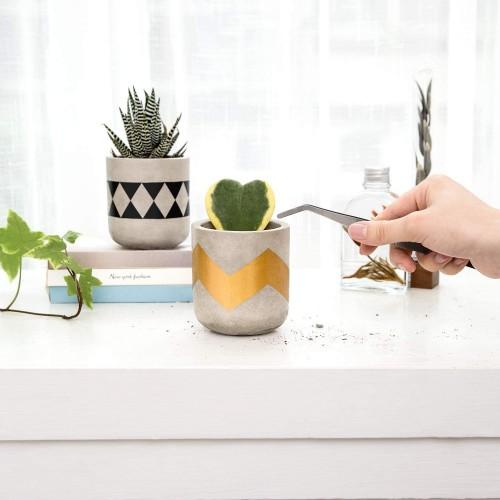 Modern Cement Succulent Planters