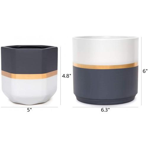 Ceramic Indoor Gardening Pots