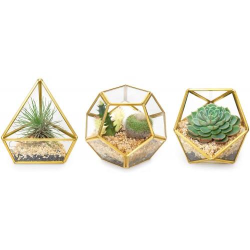 Mini Glass Geometric Terrarium