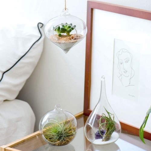 Glass Hanging Vase Terrarium