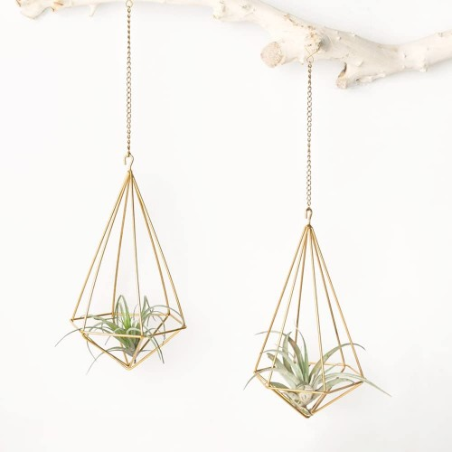 Himmeli Air Plant Holders