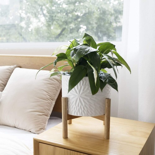 Plant Pot with Wood Stand