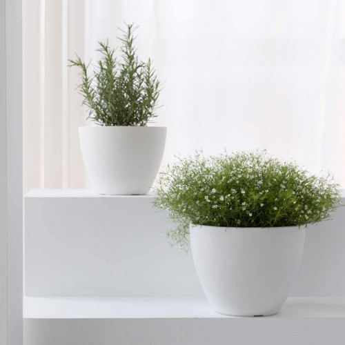 Modern Planter Flower Pots