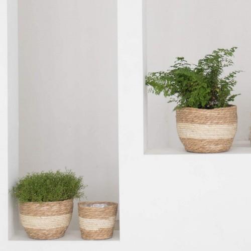 Natural Seagrass Planter Baskets