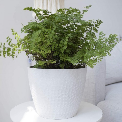 Honeycomb White Round Planter