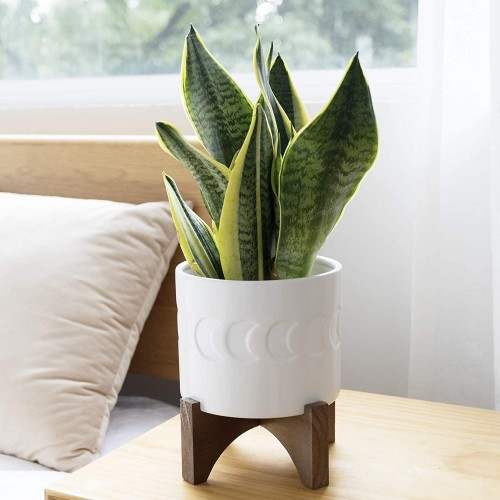 Ceramic Planter with Wood Stand