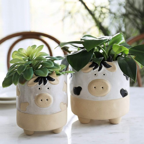 Cow Shaped Succulent Pots