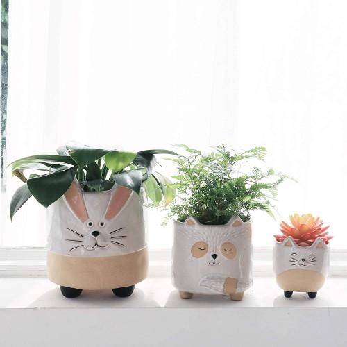 Ceramic Animal Succulent Pots