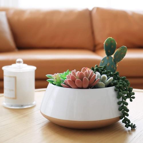 Large Succulent Planter Pot
