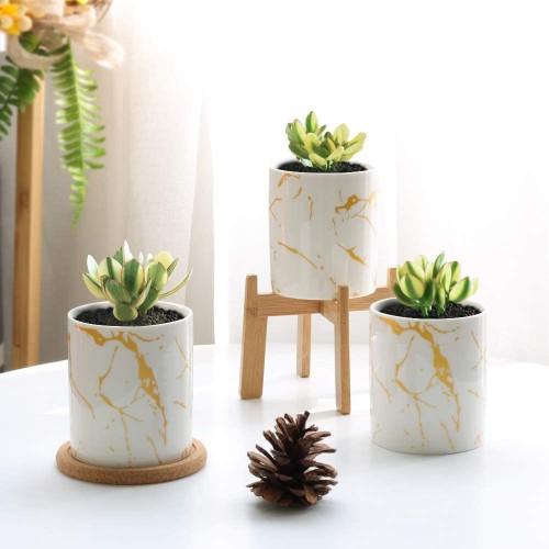 Cylinder Succulent Plant Pot