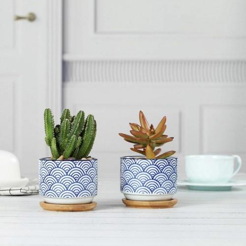 Wave Ceramic Succulent Planter