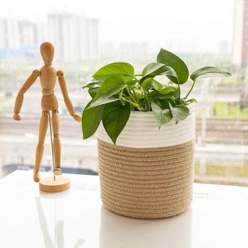 Modern Flower Plant Basket