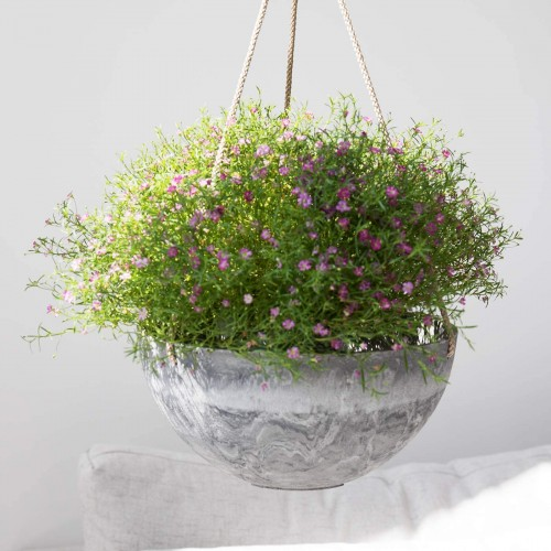 Hanging Planter Flower Pots