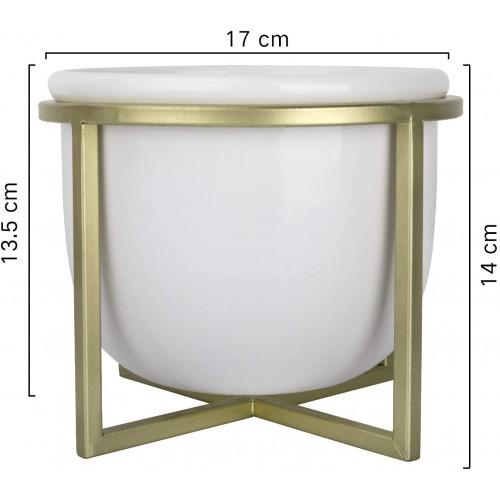 Minimalist Tabletop Plant Pot