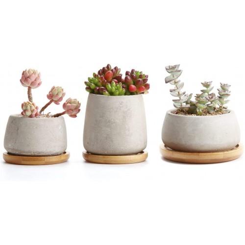 Cement Succulents Pots with Saucer